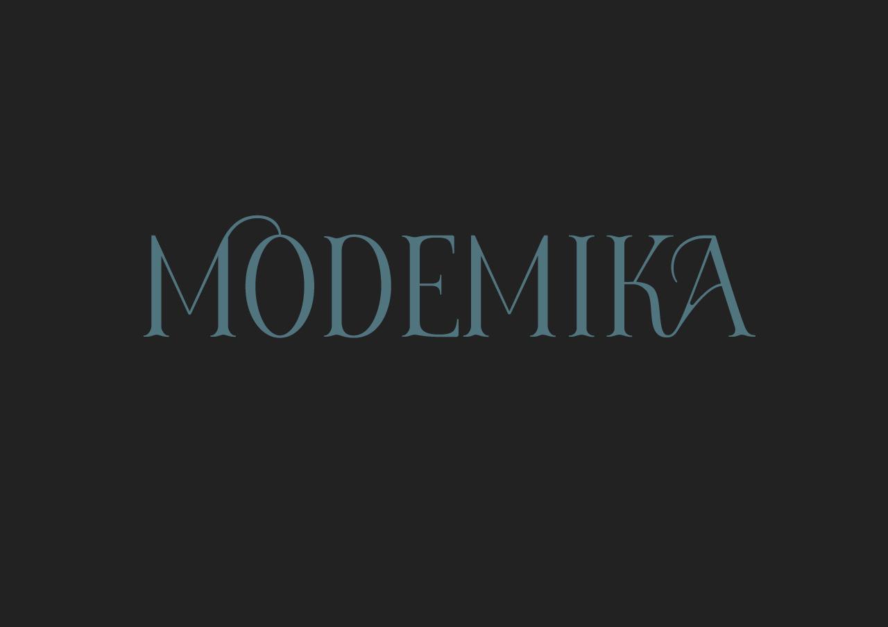 modemika_presentation_2